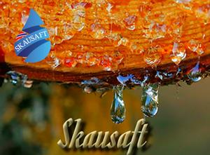 Bilde av Skausaft Shortfill - Skausaft 50 ml
